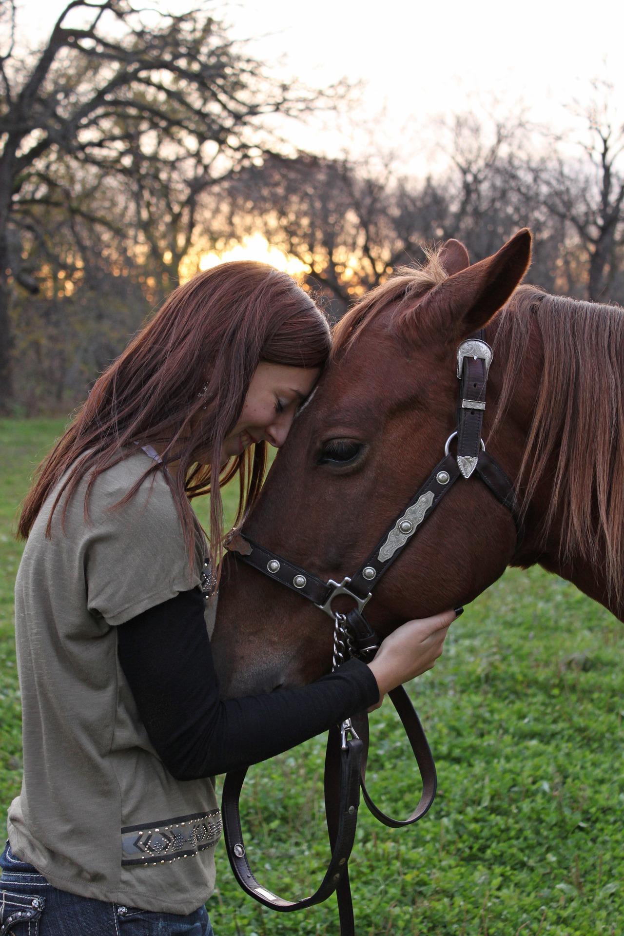 Pony Fickt Frau