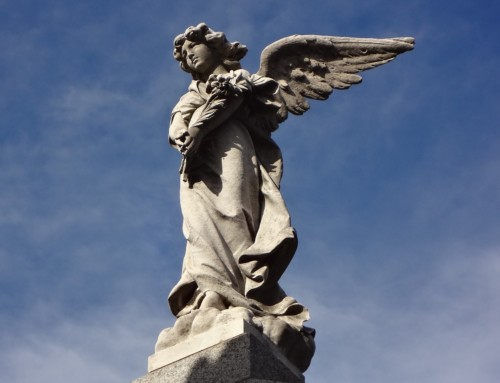 Words of the Angels: What The Bible Teaches Us About Fear
